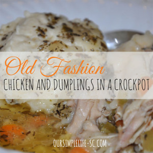 Old Fashion Chicken and Dumplings in a Crockpot