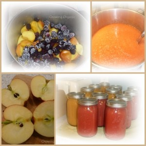 Add Variety to your Applesauce:  Strawberry, Raspberry, Blackberry, and Spicy Applesauce