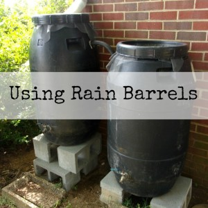 How to Use Rain Barrels