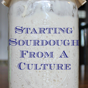 Starting Sourdough From A Culture