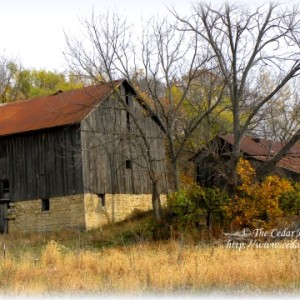 Friday Foto ♥ – Abandoned Homestead
