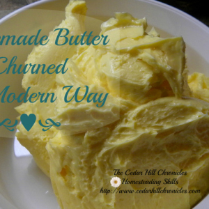 Fresh Homemade Churned Butter – The Modern Way