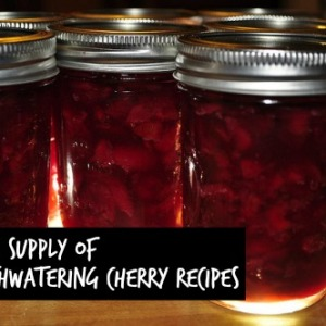 Irresistible Cherry Recipes