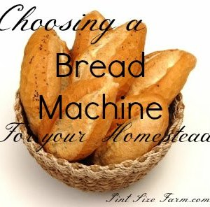Choosing a Bread Machine for your Homestead
