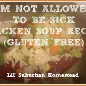 I'm Not Allowed To Be Sick Chicken Soup Recipe (Gluten Free)