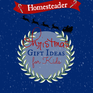 Homesteader Christmas Gifts (for Kids)