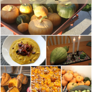 Harvesting, Storing, & Using Winter Squash