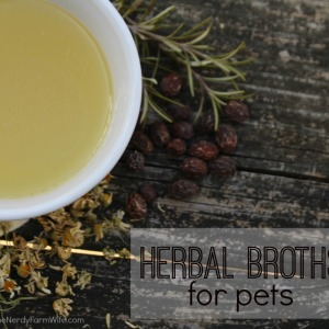 Treating Pets With Herbal Broths