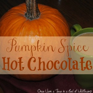 Hot Chocolate: Pumpkin Spice Style