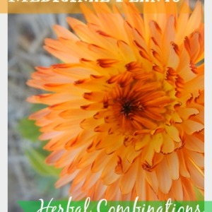 Medicinal Plants: Herbal Combinations for Health