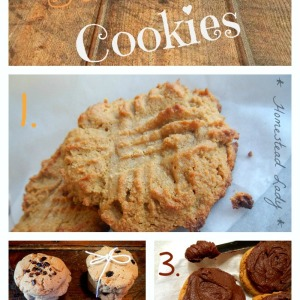 Peanut Allergy?  Try Sunbutter Cookies, 3 Ways
