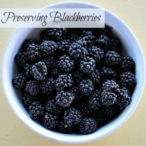 Ways to Preserve Blackberries