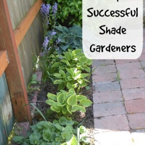 Gardners Secrets to a Successful Shade Garden