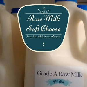 Raw Milk Soft Cheese