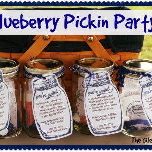 Blueberry Pickin Party