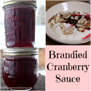 Brandied Cranberry Sauce