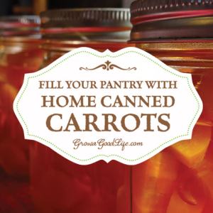 Stock your Pantry Shelves with Home Canned Carrots