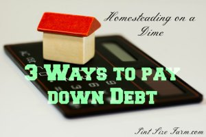 3 Ways to Pay Down Debt