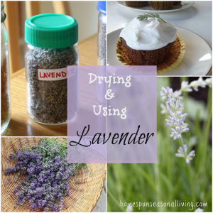 drying using lavender collage