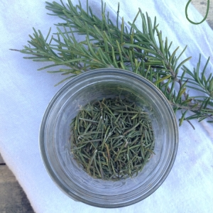 How to Dry Fresh Rosemary