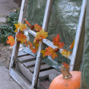 Decorate your garden for Fall and Thanksgiving