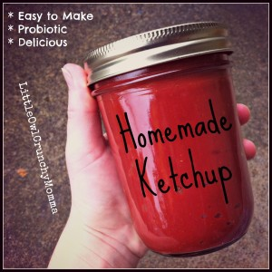 Easy Homemade Ketchup (Probiotic!)