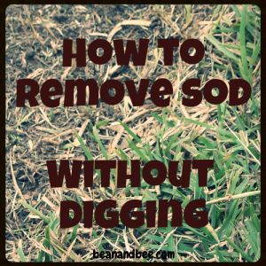 how to remove sod without digging