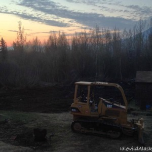 Clearing Land on the Homestead