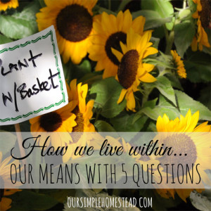 How We Live Within Our Means with 5 Simple Questions