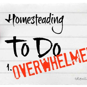 Overwhelming Homesteading