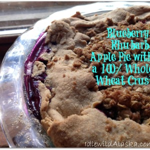 Blueberry Apple Rhubarb Pie with Whole Wheat Pie Crust