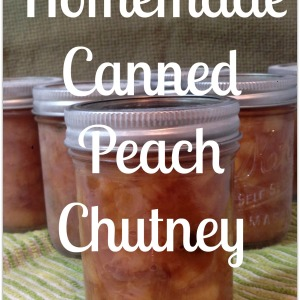 Homemade Canned Peach Chutney