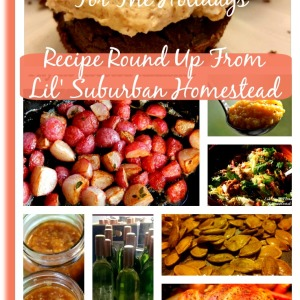 90+ Gluten Free Recipes For The Holidays!  (Recipe Round Up)