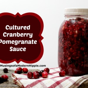 Cultured Cranberry Pomegranate Sauce
