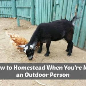 Homesteading When You Don't Like the Outdoors