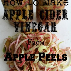 How To Make Apple Cider Vinegar From Apple Peels