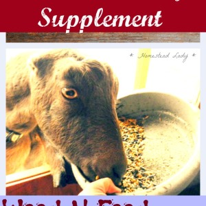 Natural Dietary Supplements for Goats