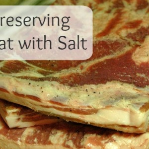 How to Preserve Meat Using Salt