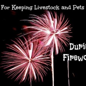 Keeping Your Pets and Livestock Safe During Fireworks