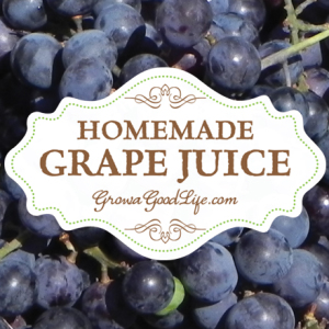 How to Make and Can Concord Grape Juice with No Added Sugar