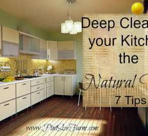 7 Ways to Deep Clean your Kitchen the Natural Way