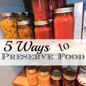5 Ways to Preserve Food