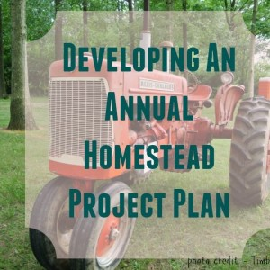 Developing An Annual Homestead Project Plan