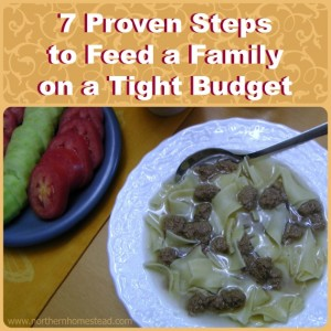 Feed a Family on a Budget