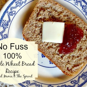 No Fuss 100% Whole Wheat Bread Recipe