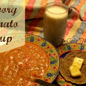 Savory Homemade Tomato Soup
