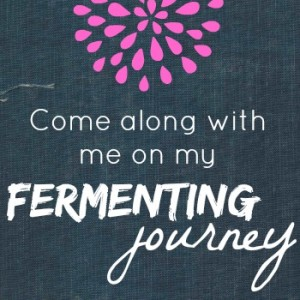 A Journey of Fermenting: Part 3