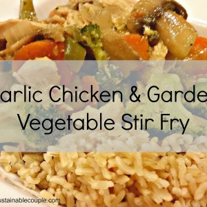Cooking for TWO: Garlic Chicken and Vegetable Stir Fry