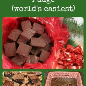 Easy Goat Milk Fudge