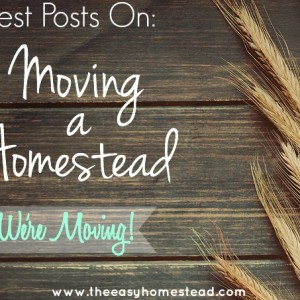 Best Posts on Moving a Homestead – P.S. We're Moving!
